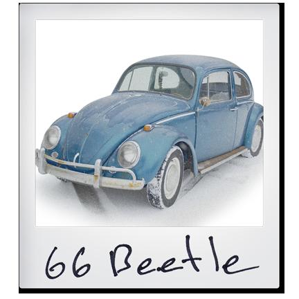 Standard Beetle