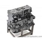 Industrial 1.6L Diesel Short Block - 12mm Mechanical